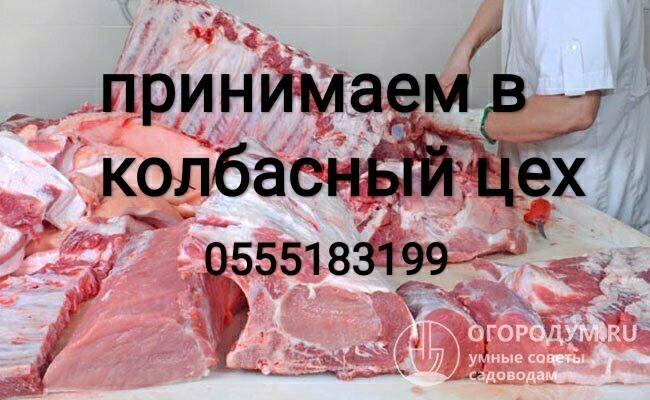 kolbasi - Бизнес-профиль компании на lalafo.kg | Кыргызстан
