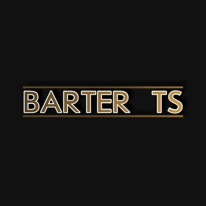 Barter TS - Бизнес-профиль компании на lalafo.kg   Кыргызстан