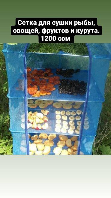 246 объявлений: Каракол, Сетка для сушки рыбы, овощей, фруктов и курута