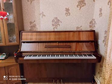 İdman və hobbi - Şəki: 550manata