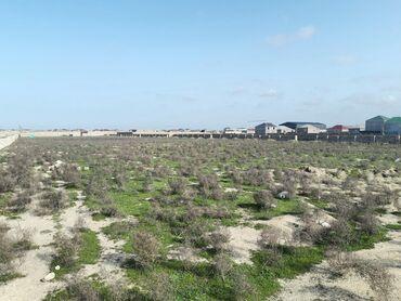 Torpaq sahələrinin satışı 10 sot Tikinti, Makler, Kupça (Çıxarış)