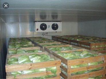 Продаю овощехранилище! в Лебединовка