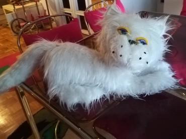 Hkosulja-cm - Srbija: Velika bela čupava mačka Duzina 90 cm