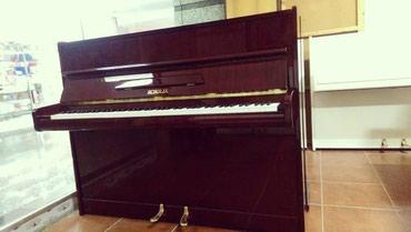 Bakı şəhərində Pianinolar - böyük seçim imkanı!