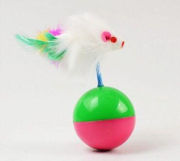 Piwik/ it oyuncaqi yeni#piwik #pisik #it #masaj #tukyigan #tuk #elcek