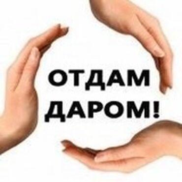детские термо колготки в Кыргызстан: 3 пакета вещей: женские, мужские, много детских вещей 0-3г Писать в