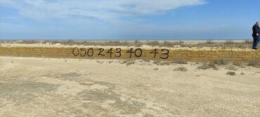 Torpaq sahələrinin satışı 12 sot Biznes üçün, Barter mümkündür, Kupça (Çıxarış)