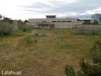 Bakı şəhərində Sabunçu rayonu, bilgəh qəsəbəsi, sanatoriyaya yaxın, mərkəzi