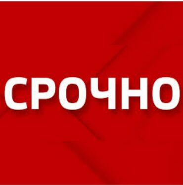 Работа - Кыргызстан: Промоутер. С опытом. 5/2. Аламедин рынок