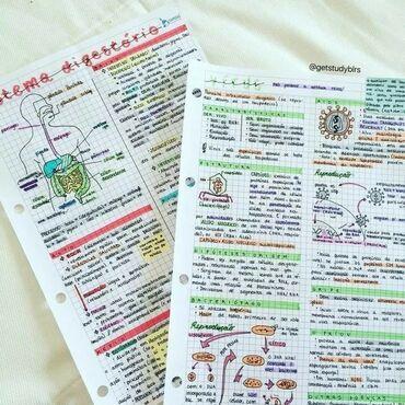 Пишу конспекты от руки, переписываю лекции по медицине 1 занятие 350