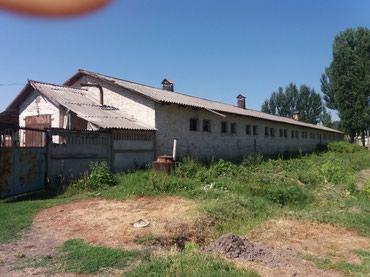 ферму металлическую 7м в Кыргызстан: Продаю отличную фазенду (ферму), расположенную 1км севернее