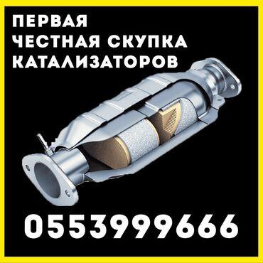 продажа щенков алабая в Кыргызстан: Катализатор алабыз, очень дорого! Быстро и качественно. Поможем убрать