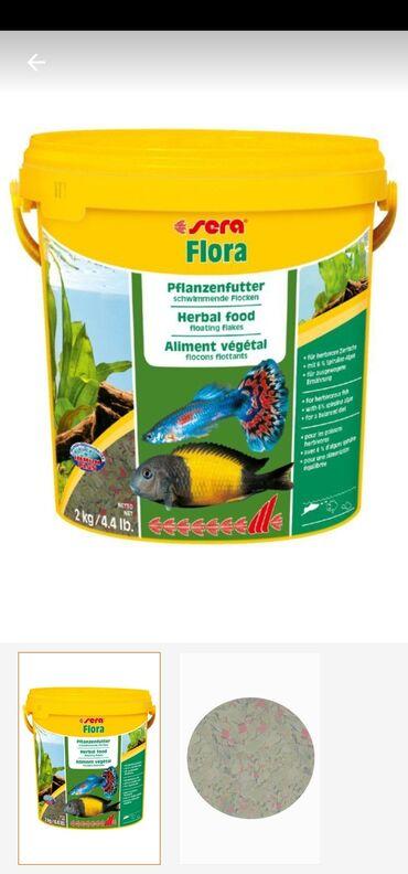 Sera flora pul Balık Yemi 100gr 12man