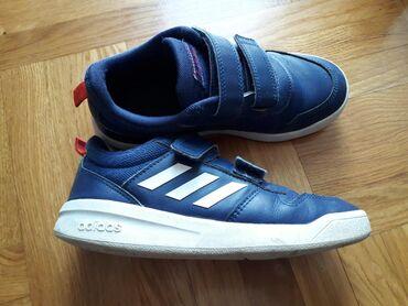 Dečije Cipele i Čizme | Stara Pazova: Adidas patike,33br
