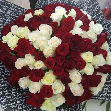 101 роза всех цветов в наличии и к ним прилагаются скидки большие