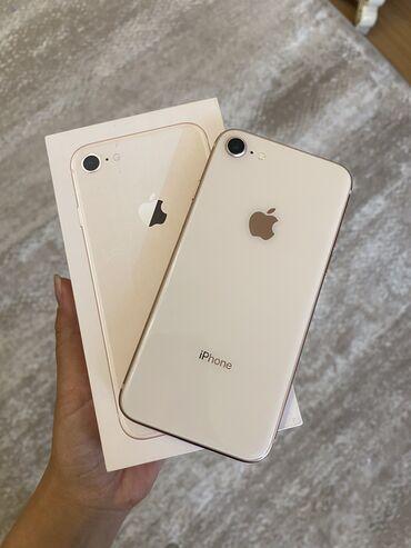 gold man бишкек in Кыргызстан   APPLE IPHONE: IPhone 8   64 ГБ   Rose Gold Колдонулган   Кепилдик, Бармак изи, Face ID