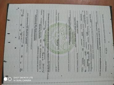 купли продажа авто в Кыргызстан: 5 соток, Для бизнеса, Собственник, Договор купли-продажи
