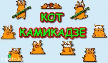 Многие кто сталкивался с такой  в Бишкек