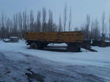 Прицеп китайский на шахман селхоз 2 цилиндр общ вес 6 тонна в Чаек