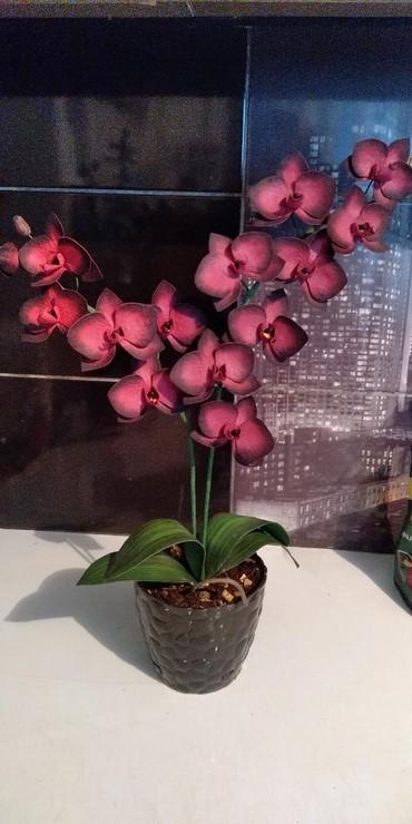 Рукоделие - Кыргызстан: Ручная работа!!! орхидеи из фоамирана, картины лентами,броши из чешско