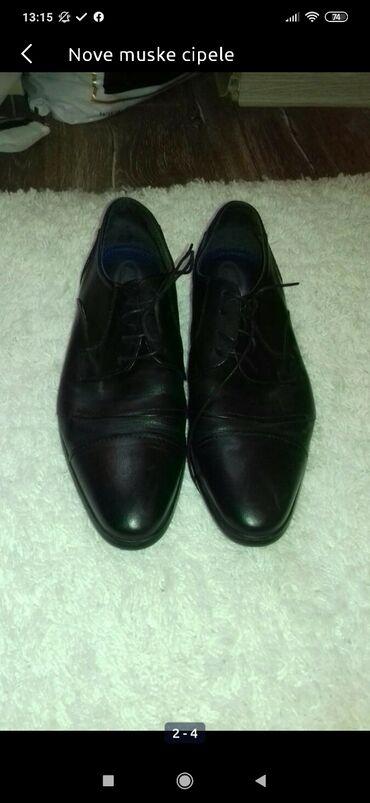 Muske cipele - Srbija: Muske cipele nove