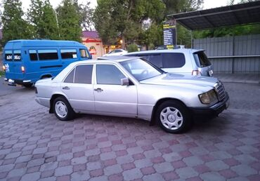 Mercedes-Benz 230 2.3 л. 1991 | 999 км