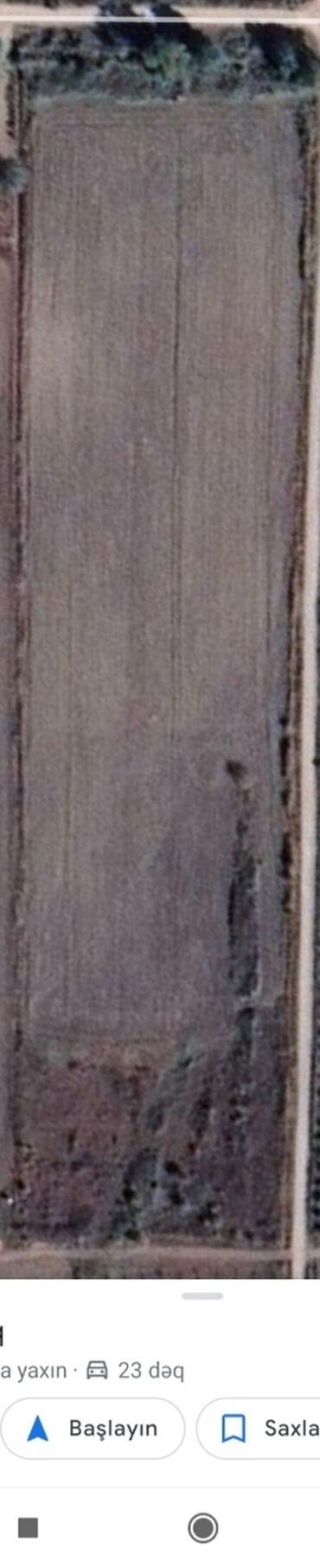 Torpaq sahələrinin satışı - Xudat: Torpaq sahələrinin satışı 310 sot Kənd təsərrüfatı, Mülkiyyətçi