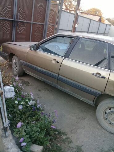 audi quattro 2 2 20v в Кыргызстан: Audi 100 1.8 л. 1983 | 9999 км