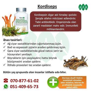 kordiseps - Azərbaycan: KORDİSEPSTƏRKİBİ:Alman biotexnologiyası ilə fermentləşdirilmiş yabanı