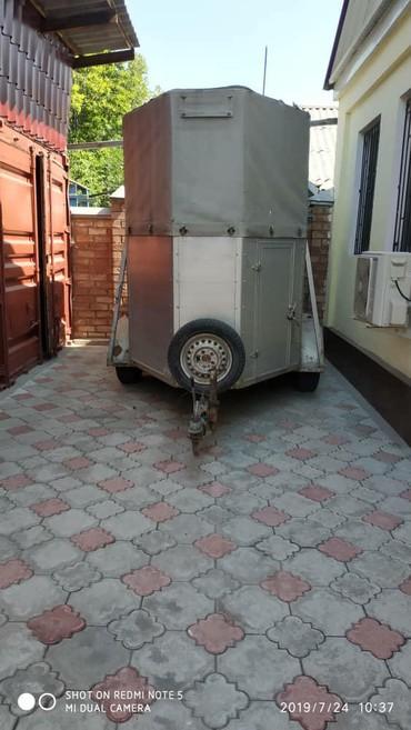 Коневоз . производства Германия .стоит в Бишкек
