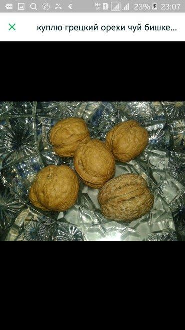 Куплю грецкий орех от 50 до 90 сомов  вацап в Сокулук