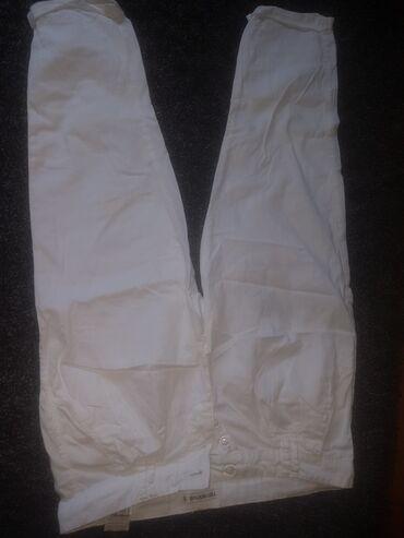Termo pantalone - Srbija: Terranova pantalone s, 7/8