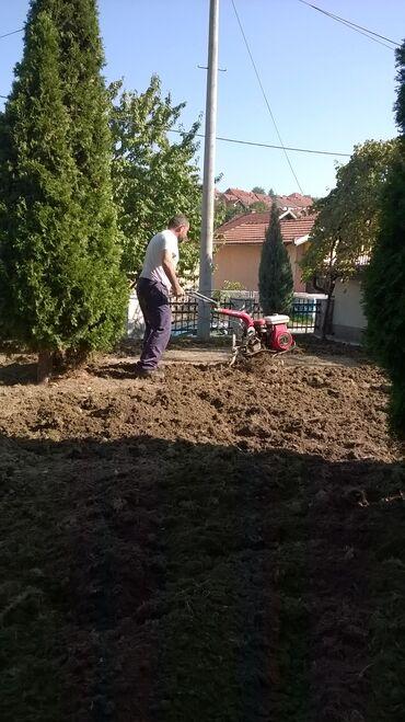 Usluge - Srbija: - Sejanje trave- Postavljanje tepih trave- Freziranje zemljišta-