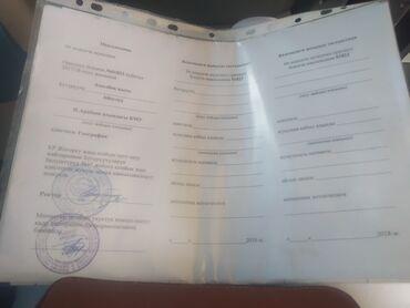 Закончила педагогического университета им. И.Арабаева Адис: География
