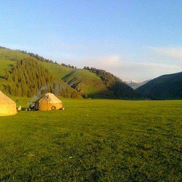 Организуем отдых на природе. услуги в Бишкек