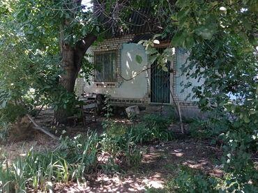 Недвижимость - Манас: 28 кв. м 2 комнаты, Балкон застеклен, Сарай, Подвал, погреб