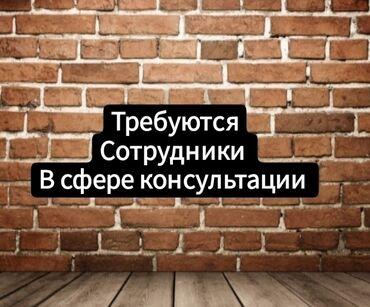 Хонор 30 про цена бишкек - Кыргызстан: Продавец-консультант. Неполный рабочий день