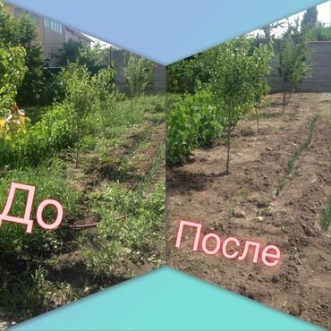 Бытовые услуги в Кыргызстан: Уборка огорода! Предоставляем услуги по : •уборка травы; •вскопка ого