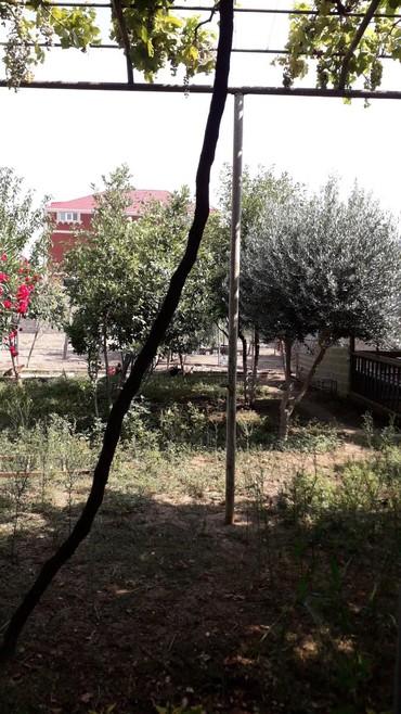 telifon - Azərbaycan: Satış Ev 340 kv. m, 6 otaqlı