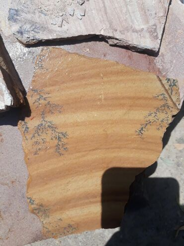 детский деревянный стул купить в Кыргызстан: Камень деревянный Облицовочный камень с узором деревья. Натуральный