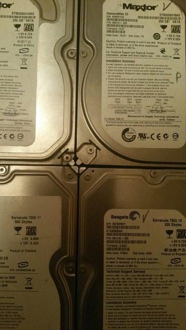 Продаю жесткие диски Maxtor 250GB 2 штук по в Шопоков