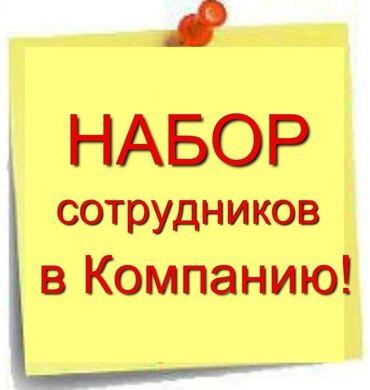 работа без опыта работы в Кыргызстан: Торговый агент. С личным транспортом. С опытом. Неполный рабочий день