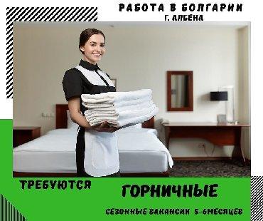 Работа торговый агент бишкек - Кыргызстан: Болгария. Домашний персонал и уборка. 6/1