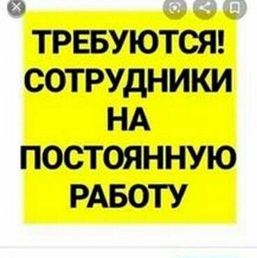 требуются отделочники бишкек в Кыргызстан: Продавец-консультант. С опытом. 5/2