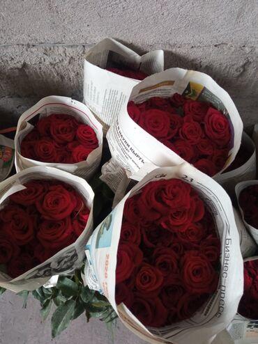 Личные вещи - Александровка: Продаю розы оптом