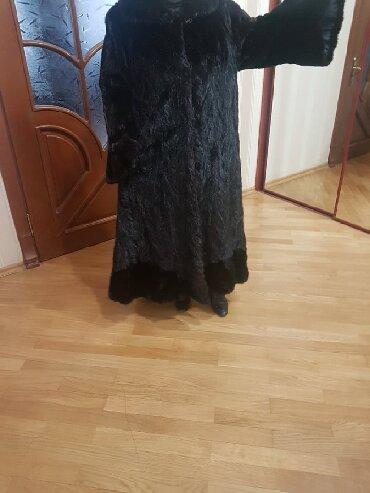 - Azərbaycan: Xəz Kürk - Norka şuba
