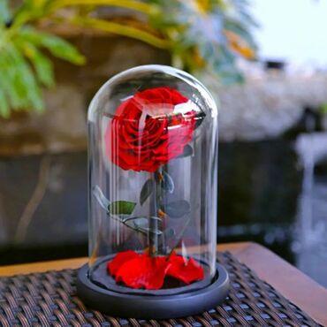 Услуги - Гульча: Роза в колбе (большой) 32см +БЕСПЛАТНАЯ ДОСТАВКА ПО КЫРГЫЗСТАНУ Цена