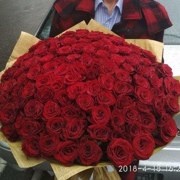 Всем Привет🔥🔯🔥🔯❤🌷 Местные Розы💗🌷💗🌷 *** 101 роза *** 🔯Всего з в Душанбе