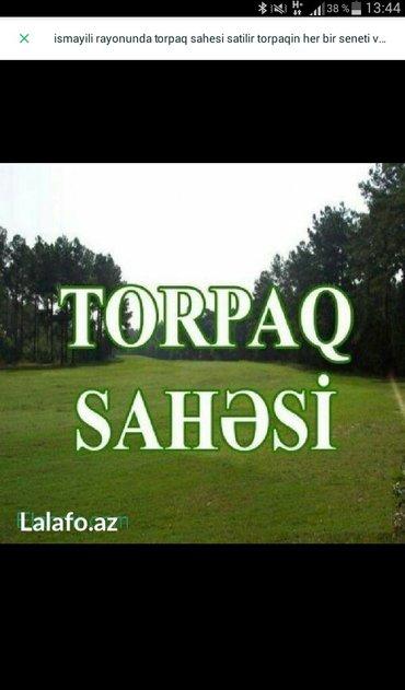 Xırdalan şəhərində Qobuda và Atyalinda torpaq sahàlàri satilir.