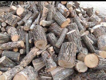 миксер цена джалал абад в Кыргызстан: Пилю деревьядрова  Цена договорная